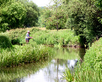 Fly Fishing on the Wylye